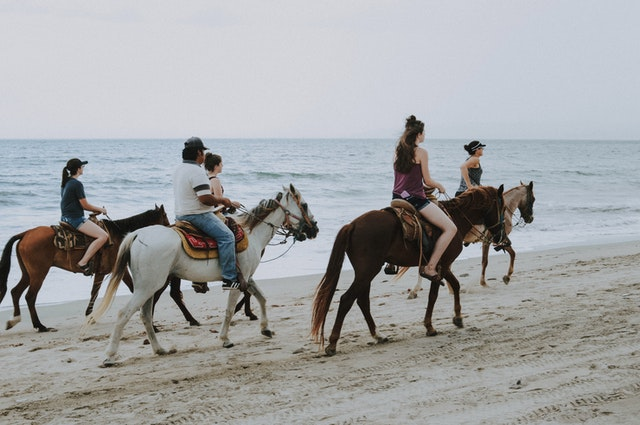 רכיבה על סוסים בחופי זנזיבר - מה צריך לדעת